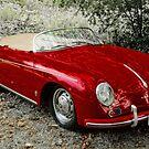 Porsche Speedster by sundawg7