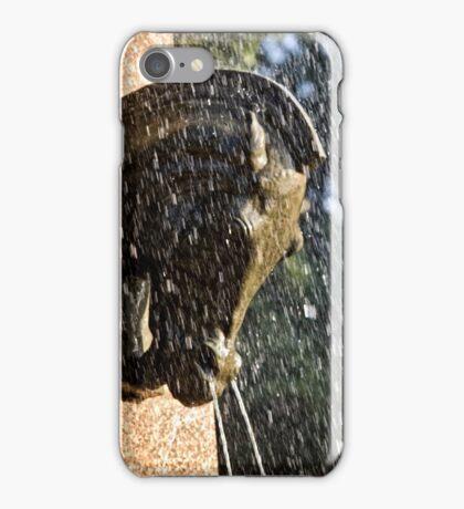 Fountain in a Sculpture (2) iPhone Case/Skin