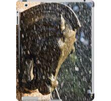 Fountain in a Sculpture (2) iPad Case/Skin
