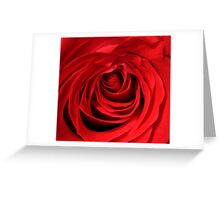 Lost in Petals Greeting Card