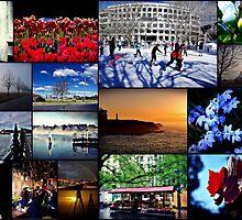 Rinaldo's Favourites - Collage by Rinaldo Di Battista