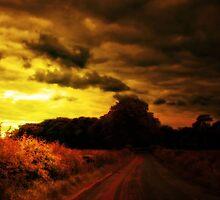 THE LONG AND WINDING ROAD by leonie7
