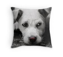 A Dog's Life 2.0 Throw Pillow
