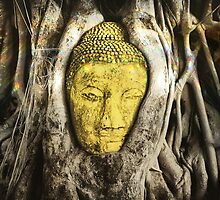 Buddha in Roots 2.0 by Nicholas Richardson