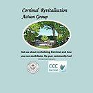 Revitalising Corrimal- NSW by Coloursofnature