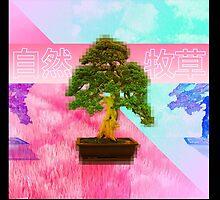 Bonsai  盆栽の木 by Sulkainenkissa