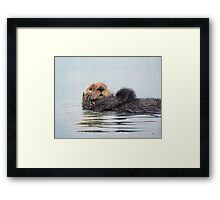 Hello Old Chap Framed Print