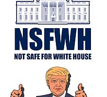 NSFWH - Not Safe For White House by Diabolical