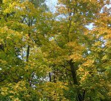 Golden autumn colors 2 Sticker