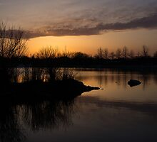 Sundown with Bare Branches by Georgia Mizuleva