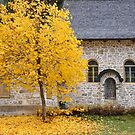 Autumn leaves next to the chapel by Arie Koene