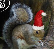 Merry Christmas Squirrel Sticker