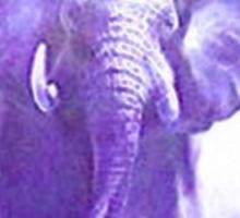 elephants running Sticker