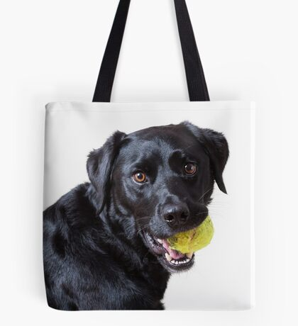 Baxter with ball, another angle Tote Bag