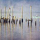 Morning Fishing by Jonicool