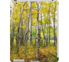 Colorado Backcountry Forest iPad Case/Skin
