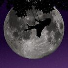 Moon Swing by Andrew Alcock