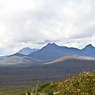 Stirling Range View by pennyswork