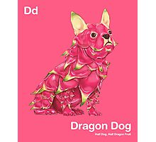 Dd - Dragon Dog // Half Dog, Half Dragon Fruit Photographic Print