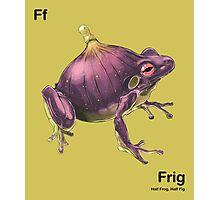 Ff - Frig // Half Frog, Half Fig Photographic Print