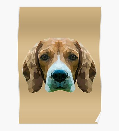 Beagle low poly. Poster