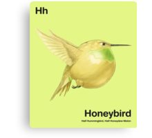 Hh - Honeybird // Half Hummingbird, Half Honeydew Melon Canvas Print