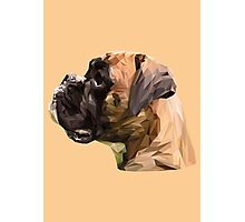 Boxer low poly. Photographic Print