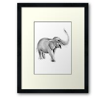 Elephant Gray Illustration Afican Animals Watercolour Painting Poster Framed Print