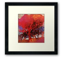 The big red tree in my courtyard Framed Print