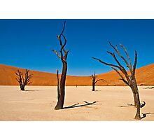 Deadvlei scene  Photographic Print