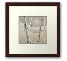 The silence of snow Framed Print