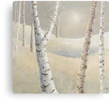 The silence of snow Metal Print