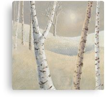 The silence of snow Canvas Print