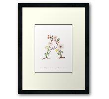 Botanical Letters A Framed Print