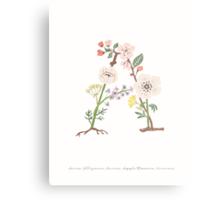 Botanical Letters A Metal Print