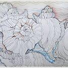 shells in line by Gea Austen