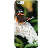 Red Admiral iPhone Case/Skin
