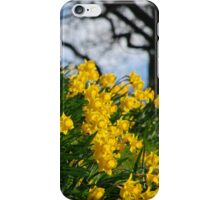 For Wordsworth iPhone Case/Skin