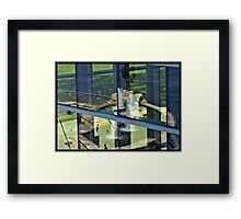 Reflections In The Glass Framed Print