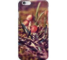 Timid Audience iPhone Case/Skin