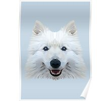 Samoyed low poly. Poster