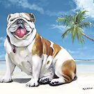 Norma Jean, The Key West Puppy by Phyllis Beiser