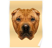 Shar Pei low poly. Poster
