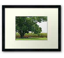 Quintessentially Country Framed Print