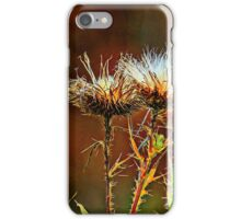 Sign of Fall iPhone Case/Skin