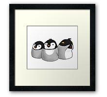 Flock Together Framed Print