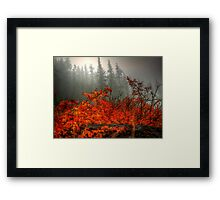 It's All In What You See  Framed Print