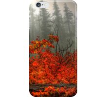 It's All In What You See  iPhone Case/Skin