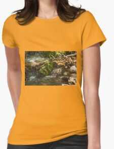 Cascade Womens Fitted T-Shirt