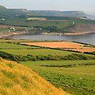 Purbeck Landscape by RedHillDigital